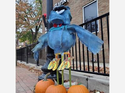 Vote now in 10th Annual 2021 Saline Scarecrow Contest