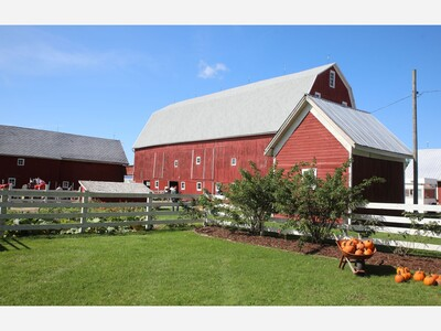 Harvest Time at the Rentschler Farm Museum